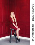 a beautiful blonde in a red... | Shutterstock . vector #1033486999