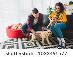 Stock photo couple playing with two labrador puppies while sitting on sofa 1033491577