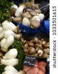 forest mushrooms on the market | Shutterstock . vector #1033501615