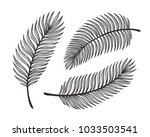 tropical palm tree leaves... | Shutterstock .eps vector #1033503541