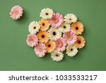 composition from fresh... | Shutterstock . vector #1033533217