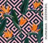 bird of paradise tropical... | Shutterstock .eps vector #1033544341