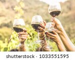 hands toasting red wine glass... | Shutterstock . vector #1033551595