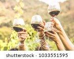 hands toasting red wine glass... | Shutterstock . vector #1033551595