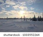 arctic winter landscape | Shutterstock . vector #1033552264