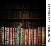 old books on wooden shelf.... | Shutterstock . vector #1033561915