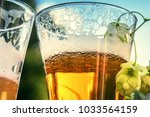 glasses of cold beer  closeup.... | Shutterstock . vector #1033564159