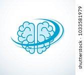human anatomical brain vector... | Shutterstock .eps vector #1033581979