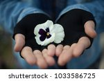boy or girl holding flower in... | Shutterstock . vector #1033586725