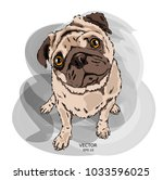 portrait of dog. can be used... | Shutterstock .eps vector #1033596025