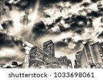san francisco skyline at night. ... | Shutterstock . vector #1033698061