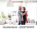 senior couple relaxing at home  ... | Shutterstock . vector #1033720495