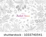 hand drawn illustration frame...   Shutterstock .eps vector #1033740541