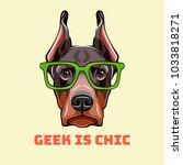 doberman pinscher face in a... | Shutterstock .eps vector #1033818271