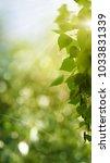 funny seasonal panoramic banner ... | Shutterstock . vector #1033831339