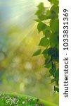 funny seasonal panoramic banner ... | Shutterstock . vector #1033831369
