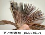 investments in thai baht   Shutterstock . vector #1033850101
