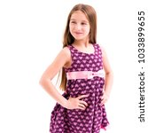 pretty lovely girl with long... | Shutterstock . vector #1033899655