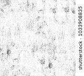 texture of dust  spots  lines ... | Shutterstock . vector #1033908835