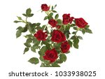 red roses flower bouquet on... | Shutterstock . vector #1033938025