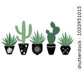 green house plants in the black ... | Shutterstock .eps vector #1033951015