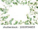 frame of eucalyptus branch... | Shutterstock . vector #1033954855