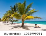 caribbean tropical beach... | Shutterstock . vector #1033999051
