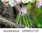 a delicate and very beautiful... | Shutterstock . vector #1034011729