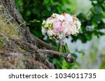 a delicate and very beautiful... | Shutterstock . vector #1034011735
