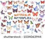Stock vector vector illustration of watercolor butterflies isolated on white background 1034063944