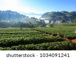 doi angkhang mountain ... | Shutterstock . vector #1034091241