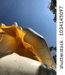 buddha and wind | Shutterstock . vector #1034145097