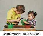 lovely children transplanted... | Shutterstock . vector #1034220805