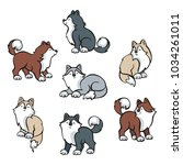 funny husky dogs set. vector... | Shutterstock .eps vector #1034261011