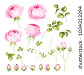 vintage flowers set over white... | Shutterstock .eps vector #1034313394