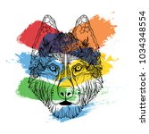 ornament face of dog husky in... | Shutterstock .eps vector #1034348554