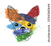ornament face of dog chihuahua... | Shutterstock .eps vector #1034360644