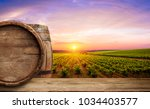ripe wine grapes on vines in... | Shutterstock . vector #1034403577