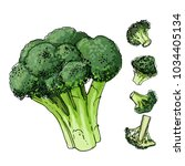 Broccoli Cabbage Painted With ...