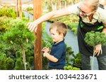 boy educate the bushes | Shutterstock . vector #1034423671