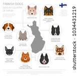 dogs by country of origin.... | Shutterstock .eps vector #1034431219