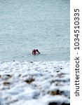 Small photo of Brighton Beach UK Sea Swimmers undeterred by snowfall 9.30am Feb 27th 2018