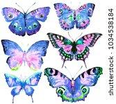 beautiful butterflies  set... | Shutterstock . vector #1034538184