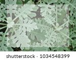 closeup green small plant with... | Shutterstock . vector #1034548399