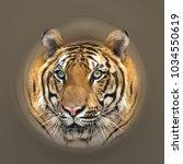 tiger head on brown background...   Shutterstock . vector #1034550619