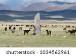 herd of sheep and goats in the... | Shutterstock . vector #1034562961
