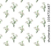 seamless pattern with beautiful ... | Shutterstock .eps vector #1034731687