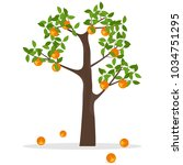 orange tree  a tree with... | Shutterstock .eps vector #1034751295