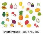 tropical fruits vector... | Shutterstock .eps vector #1034762407