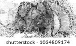 mosaic abstract background with ... | Shutterstock . vector #1034809174